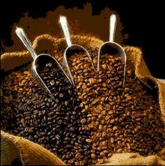 Farmville in NatureWalk - grow your own coffee