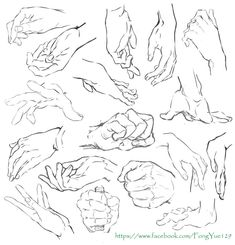 How to draw Manga and Anime Hand Drawing Reference, Art Reference Poses, Art Poses, Drawing Poses, Anatomy Drawing, Manga Drawing, Drawing Practice, Figure Drawing, Hands Tutorial