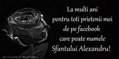 La multi ani pentru toti prietenii mei de pe facebook care poate numele Sfantului Alexandru!
