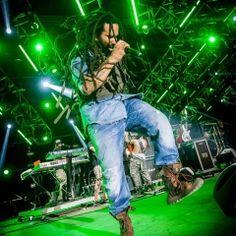 KY-MANI-MARLEY Woodstock, Reggae, Concerts