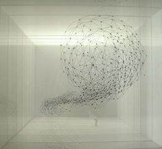 PR.flock1.1.sm by annahepler, via Flickr