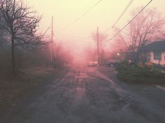 http://refinedmind.tumblr.com/post/82826728098/just-before-nightfall-i-decided-to-take-a-walk