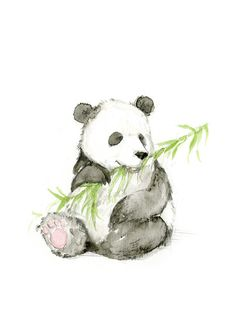 Because pandas!! :: watercolor illustration print by Catherine Odell