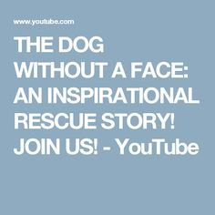 THE DOG WITHOUT A FACE: AN INSPIRATIONAL RESCUE STORY!  JOIN US! - YouTube