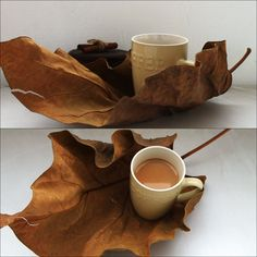 Autumn coffee.. I just walked home from work today and saw some huge leaves when I thought that my coffee would look really nice on it instead of some usual tray.. :D