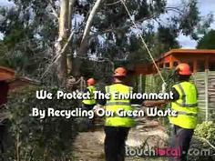 Wychwood tree surgeons provide tree surgery, tree felling, tree removal and all types of domestic and commercial tree works in London and Essex. Wychwood tree surgeons emergency tree surgeons London, 24 hour call out for London. Tree Surgeons, Tree Felling, Tree Care, Surgery, Outdoor Power Equipment, Commercial, London, Business, Store