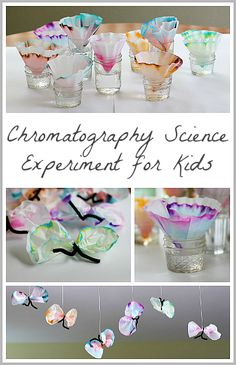 Combine ART and SCIENCE with this fun experiment and butterfly craft! (Science for Kids: Chromatography Butterfly Craft ~ Buggy and Buddy)