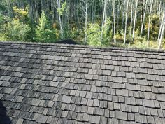 Photos Faux Cedar Shake Roof   Top Rated Synthetic Composite CeDUR Roofing Shakes Wood Roof Shingles, Cedar Shake Shingles, Timber Roof, Cedar Shakes, Cool Roof, Cabins In The Woods, Cottage Homes, Entry Doors, Roof Top