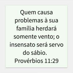 Provérbios 11:29