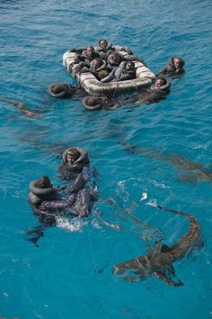 the sharks were swimming around the survivors of the USS Indianapolis
