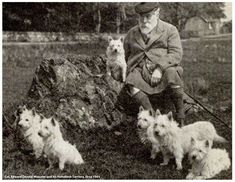Today is National Westie Day marked by the passing of the 16th Laird of the MacCullum-Malcom!  Edward Donald Malcolm died on March 20, 1930, at 92 years old. He was fortunate to have witnessed the development of his breed into not only a working dog, but a show dog and popular pet worldwide. Today, Col. Malcolm is regarded as the man who not only bred the right type, but brought the Westie to public notice.