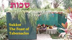 A prophetic and practical look at The Feast of Sukkot also known as Tabernacles.In this message we will see the physical and spiritual parallels of Yeshuas'… Festival Of Tabernacles, Feast Of Tabernacles, Feasts Of The Lord, Shabbat Shalom, Table Decorations, Israel, Holiday, Rabbi, David Jones