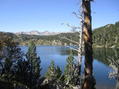 Fotografies de Taller de paisatge. #Paisatgisme natural. www.tallerdepaisatge.com