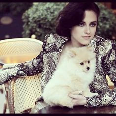 Oh Kristen and pomeranian...