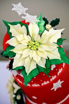 Holiday Poinsettia Cake   Photography by Prem Midha   Yesterday I entered my second cake competition.  This was the Patty Cakes Holiday Cake...