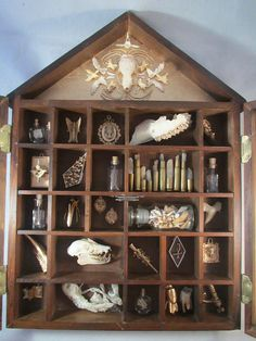The Gilded Ossuary Curiosity Cabinet by openthecellardoor on Etsy, $325.00