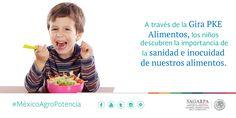 A través de la Gira PKE Alimentos, los niños descubren la importancia de la sanidad e inocuidad de nuestros alimentos. SAGARPA SAGARPAMX #MéxicoAgroPotencia