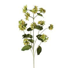Fleur Ladies Mantle Stem (Set of 12)