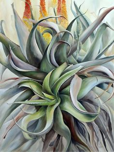 67 Aloes in 67 Minutes (Oil on canvas x By Ellie Eburne Watercolor Succulents, Cacti And Succulents, Agaves, Colored Pencils, Aloe, Oil On Canvas, Beach House, Cactus, Pastel