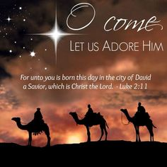 Christian Teachings According To God's Word And The Life Of Jesus – CurrentlyChristian Christmas Nativity, Christmas Pictures, Bible Quotes, Bible Verses, Scriptures, Luke 2 11, Lucas 2, Christmas Scripture, Christmas Blessings