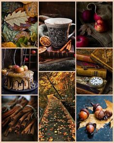"Mabon aesthetic: ""Autumn is a second spring when every leaf is a flower."""