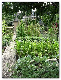 Der Bauerngarten von Familie Angeli aus Köln