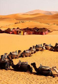 Preparing to sleep in the desert. Sahara desert - Morocco