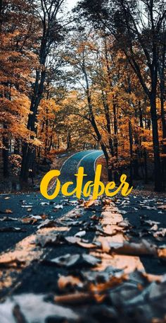 A great, beautiful, and aesthetic october (fall) wallpaper for you! A great, beautiful, and aesthetic october (fall) wallpaper for you! October Wallpaper, Calendar Wallpaper, Fall Wallpaper, Couple Wallpaper, Wallpaper Backgrounds, Wallpaper Ideas, Wallpapers, Iphone Wallpaper Herbst, Macbook Wallpaper