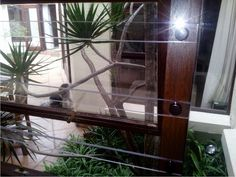 SheerGuard offer you the world's strongest clear burglar bars and transparent gates, designed to enhance your living space with an unparalleled aesthetic ability to merge both indoor and outdoor spaces. Security Gates, Diy Home Security, Burglar Bars, Picture Show, Outdoor Spaces, Living Spaces, Custom Design, Indoor, South Africa
