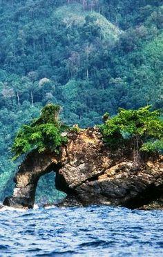 Parque Nacional Península de Paria... Estado Sucre.