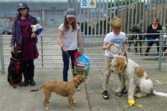 Child Handler - Elsie Riley, Trixie Benney, Huxley Bartlett
