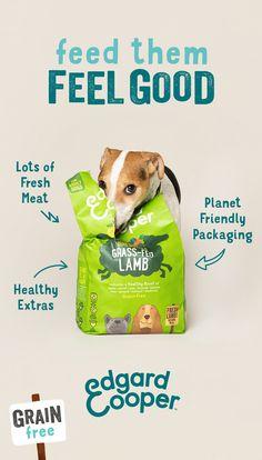 Dog Treat Packaging, Pet Branding, Color In Film, Natural Pet Food, Grain Free Dog Food, Pet Supplements, Dog Food Brands, Fresh Meat, Food Packaging Design