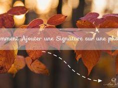 [Photoshop] Comment ajouter une signature sur une photo - par Anne Jutras Artiste Photographe