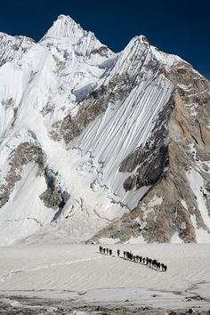 Khurpa is a Balti word, meaning porter. The Khurpas of Pakistan can be described as an equivalent to the better known Sherpas in Nepal, working hard on high altitude in the Karakoram mountain range. In this picture a group of Khurpas is approaching Ali Camp, not far from K2. Mountains and Khurpas by Bjorn Billing.