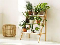 Suporte para plantas - blog Achados de Decoração                                                                                                                                                                                 Mais