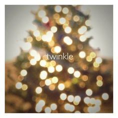 6 Unique Christmas Tree Photo Ideas - The Photo Argus Unique Christmas Trees, Christmas Love, Xmas, Christmas Photography, Photo Tree, Heart Eyes, Harvard, Bokeh, Twinkle Twinkle