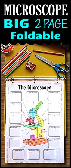 Gr.6-12 This Microscope Foldable big enough to color and add descriptions for the functions of each microscope part.  It comes in five options for differentiation for different levels of users.  Students will love using this for learning and as a graphic organizer for review.  Great for INB or binders.