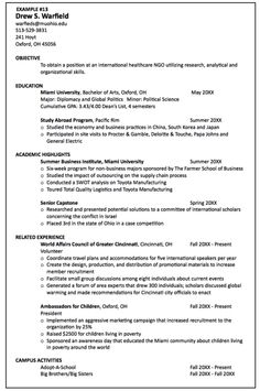 sample international healthcare ngo resume httpexampleresumecvorgsample - International Resume Format