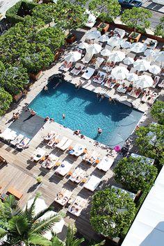 pool at the modern honolulu