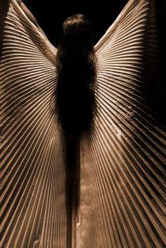Rio's Wings of Isis by Stokkanda, Deviantart. Opening number at a oriental dance festival in Rio De Janeiro. Source: http://stokkanda.deviantart.com/art/Rio-s-Wings-of-Isis-109534259?q=gallery%3Astokkanda%2F8296300=55