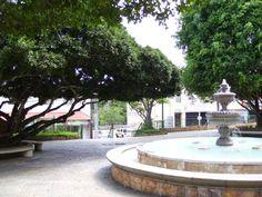 Municipio de Aguas Buenas