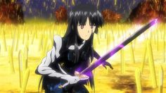 Ena Campione! Basara, King Of Kings, Light Novel, Anime, Novels, Cosplay, Illustrations, Characters, Sleeves