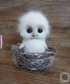 Cute Animals Hd only Domestic Animals Cute Pictures + Cute Baby Animals Live Wallpaper Needle Felted Animals, Felt Animals, Needle Felting, Animals And Pets, So Cute Baby, Cute Babies, Baby Animals Pictures, Funny Animal Pictures, Felt Pictures