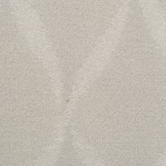 STAINMASTER TruSoft Vineyard Manor Moonglow Cut and Loop Indoor Carpet