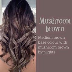 Mushroom Brown Higlight Hair color ideas 2017 - New Hair Design 30 Hair Color, Hair Color 2017, Hair Colours, Hair Color Brown, 2018 Hair Color Trends, Cool Brown Hair, 2018 Color, Gray Highlights Brown Hair, 2017 Hair Trends Long