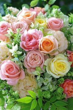Pale peach, pink, and yellow rose bouquet. Beautiful Flower Arrangements, Floral Arrangements, Beautiful Bouquets, Amazing Flowers, Beautiful Roses, Pretty Flowers, Fresh Flowers, Exotic Flowers, Purple Flowers