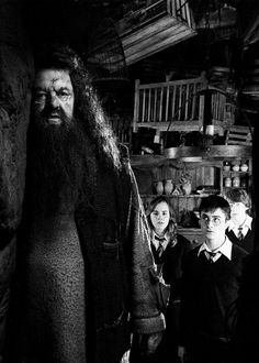 Hagrid, Hermione, Harry & Ron