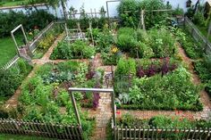 A beautiful and fertile vegetable garden by the water.