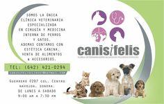Canis i Felis  Clinica Veterinaria Navojoa, Sonora