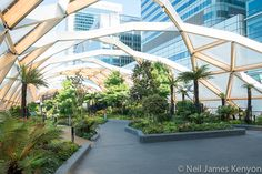 Crossrail roof garden Canary Wharf. Landscaping by Gillespies